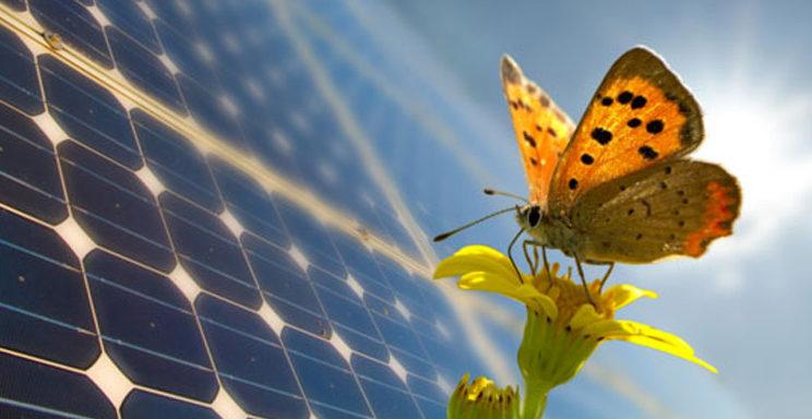 impianto-fotovoltaico-energia-rinnovabile-reggio-emilia-3